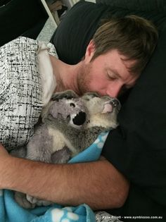 We're *dead*. | These Keepers Raising A Baby Koala Will Make You Jealous As Hell