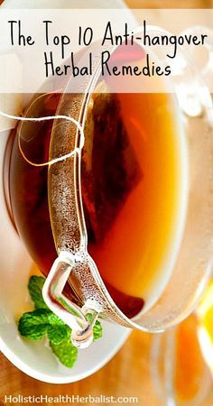 The Top 10 Anti-hangover Herbal Remedies - Sometimes it's better to know these things and not need them than to need them and not know them! Learn about which natural remedies work best for hangovers.