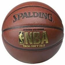 Spalding NBA Basketball We should get one since we have a half court spot in our back yard and no ball.