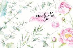 Watercolor eucalyptus set by artnLera on @creativemarket
