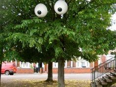 -Filthy Luker-  'tree closeup'