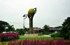 Monumento al Mango...(Mangifera indica) Fruta prodigiosa de Cojedes.