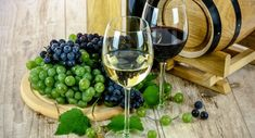 Devour the Details: Get a Taste for Winemaking You Can Do at Home