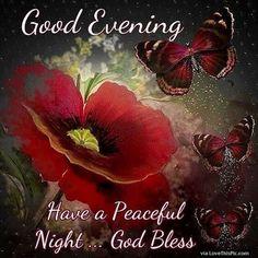 Good Evening/Night ~~J