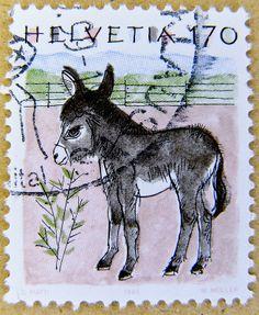beautiful stamp Helvetia Swiss 170r postage Switzerland donkey