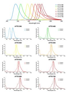 Overview of the ATTO fluorescent conjugates available from Stressmarq