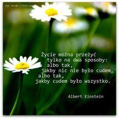 Życie można przeżyć tylko na dwa sposoby: albo tak, jakby nic nie było cudem, albo tak, jakby cudem było wszystko. Albert Einstein #cytaty Nick Vujicic, Love Days, Albert Einstein, Motto, Positive Thoughts, Poems, Life Quotes, Herbs, Positivity