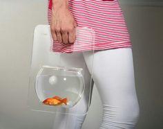 Aquí salen a pasear hasta los peces! !