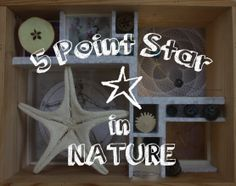 Five Pointed Star, Five Points, Numbers, Posts, Activities, Natural, Happy, Projects, Home Decor