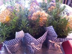 """Potted herbs with cookie flowers """"blooming"""" within!"""