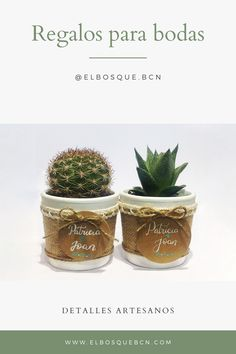 Tendencias 2020 bodas Cactus Y Suculentas, Planter Pots, Place Cards, Place Card Holders, Guest Gifts, Mini Cactus Garden, Succulent Plants