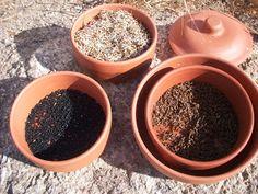 Leite da Terra: Sementes que são utilizadas para germinar brotos Raw Food Recipes, Dog Bowls, Pudding, Desserts, Herbs, Organic Seeds, Apple Juice, Popcorn Kernels, Raw Recipes