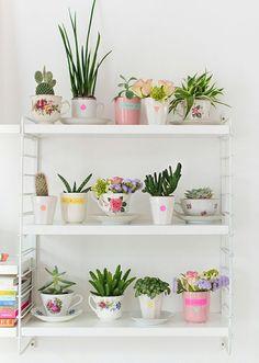 12 inspirações para decorar com plantas.