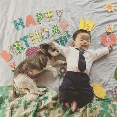 ます かず ピロさんはInstagramを利用しています:「Happy 1/2 Birthday #ハーフバースデー #ろっかげつのおとこのこ #happyhalfbirthday #birthday」