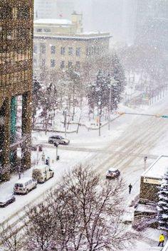 Heavy snow in New York City - 5th Avenue SW