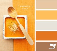Pumpkin Soup Color Combo