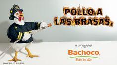 Publicidad de Bachoco
