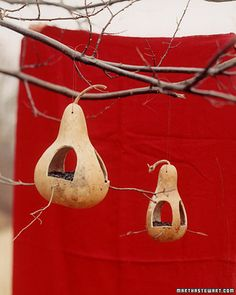 I need to plant some gourds next spring.  These would make great fairy houses!