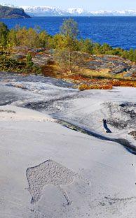 I Hjemmeluft i Alta er ikke alle helleristningene røde - Foto: Kjersti Bang