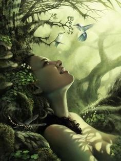 Enchanted Woods/Forest. http://universal-wellness.blogspot.com/2015/02/baring-my-soul-and-planting-dream.html