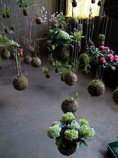 """Art-Monie: Fedor van der Valk """"String Gardens"""""""
