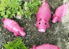 You will love making these Painted Clay Pot Critters and we show you how to make Planters for your home and garden. Check out all the ideas now.