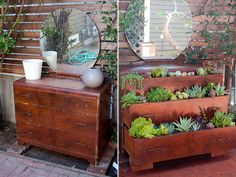 upcycled garden.  I can see furniture coming from thrift stores or off the street, and doing this.  Perhaps keeping them on a porch or something away from rain though.  Or using that deck water proofing stuff...