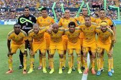Club Tigres U.AN.L. Temporada.-2014.