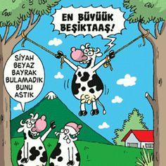 En büyük Beşiktaş