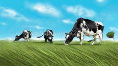 Storyboard, Illustrator, Cow, Landscape, Animals, Animales, Scenery, Animaux, Illustrators