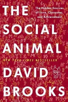The Social Animal by David Brooks, chosen by WPL Board Member Susan Gately