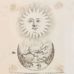 Status Report: Sun Moon Day