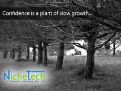 Confidence is a plant of slow growth...