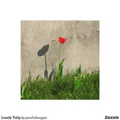 Lonely Tulip Wood Wall Art Wood Company, Wood Canvas, White Ink, Wood Wall Art, Wood Print, Art Images, Natural Wood, Lonely, Tulips