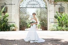 http://www.photaki.com/picture-bride-standing-in-a-courtyard_1321908.htm