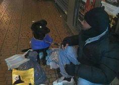 Zaragoza aprueba que personas sin recursos accedan al albergue acompañados de sus perros: http://www.schnauzi.com/ayuntamiento-zaragoza-aprueba-pers……/