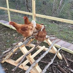 Building A DIY Chicken Coop If you've never had a flock of chickens and are considering it, then you might actually enjoy the process. It can be a lot of fun to raise chickens but good planning ahead of building your chicken coop w Chicken Swing, Chicken Roost, Chicken Garden, Backyard Chicken Coops, Chicken Coop Plans, Building A Chicken Coop, Diy Chicken Coop, Chickens Backyard, Chicken Run Ideas Diy