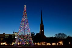 The South's Best Christmas Festivals: Holiday Festival of Lights Charleston
