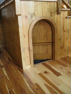 Doggy door?
