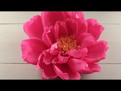 How to Make Giant Paper Flowers for a Wedding Backdrop - DIY Craft Tutorial - YouTube