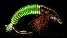 Nice green larva pattern - the Flybrary