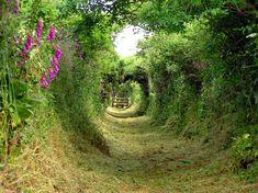 pictures of country paths   Si un títol ha aconseguit fer rutllar els engranatges que s'havien ...