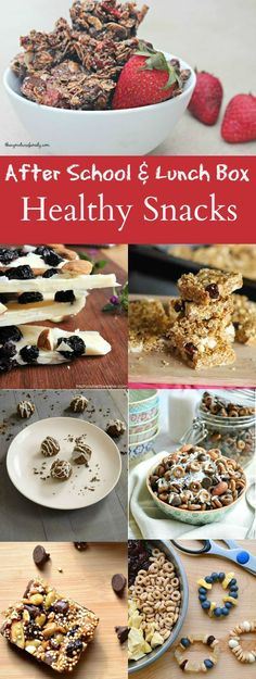 After School & Lunch Box Healthy Snacks are the perfect recipes for school or home to keep the kiddos fueled for the rest of the day.