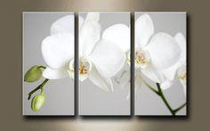 2561951 / Cuadro Triptico Flor Blanca