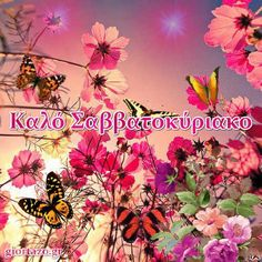 Greek Quotes, Happy Day, Good Morning, Plants, Movie Posters, Art, Buen Dia, Art Background, Bonjour