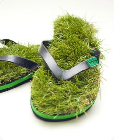 Un paseo por la hierba...