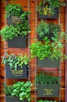 Vertical herb garden for the outdoors #herbs Would be great for flowers too, hanging on the privacy fence and retaining wall.