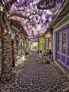 Sipping coffee with friends in Santorini, Grecia Wisteria! Places Around The World, Oh The Places You'll Go, Places To Visit, Around The Worlds, Small Places, Dream Vacations, Vacation Spots, Vacation Destinations, Magic Places