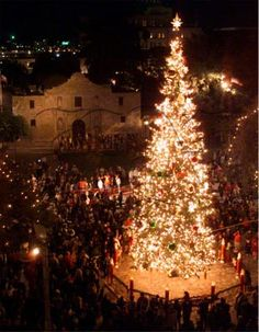 The Christmas tree lighting at Alamo plaza. My little sister pulled the switch when she was in grade school!