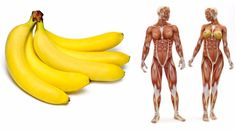In just a month after you start eating two bananas a day, medical condition should significantly help to improve! Most people today no time for healthy eating, and prefer to resort to fast food than for healthy foods, while fruits and vegetables are very low ranking on the scale selection of food. Scientists can not …